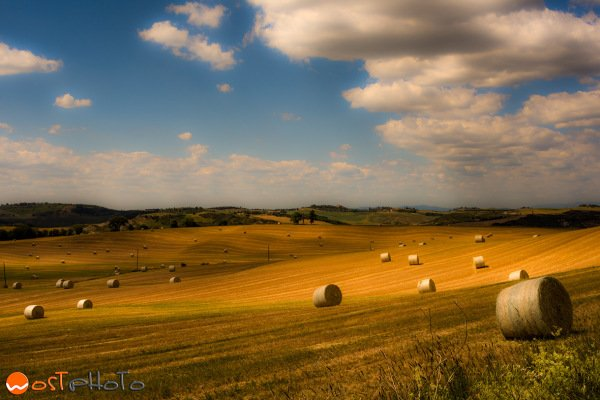 Hay balls in the fields in Val d'Orcia, Tuscany/Italy