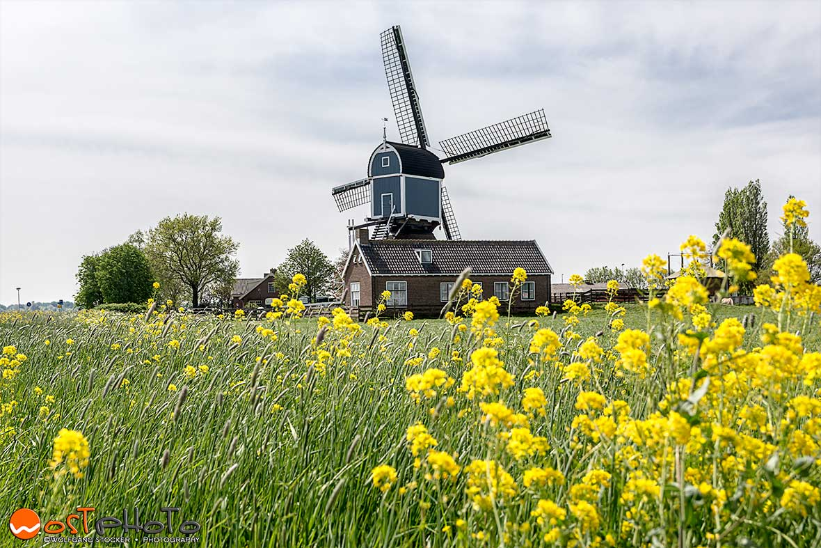 Windmill in the Dutch country